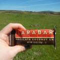 Chocolaty Larabar